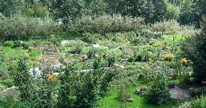 Permakultur Garten Anlegen : permakultur i ko estate garden pinterest permakultur und g rten ~ Markanthonyermac.com Haus und Dekorationen