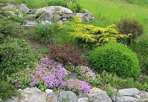 Gartengestaltung Unter Bäumen : steingarten anlegen neue ideen f r ihren garten garten hausxxl garten hausxxl ~ Yasmunasinghe.com Haus und Dekorationen