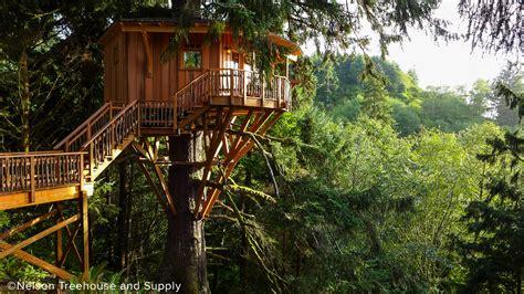 neskowin luxury treehouse swenson  faget