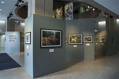 lions tigers bears exhibition  washington dc