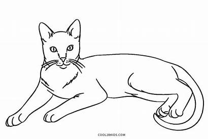 Cat Coloring Cats Pages Printable Warrior Nyan