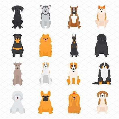 Dogs Different Vector Dog Breed Illustration Breeds