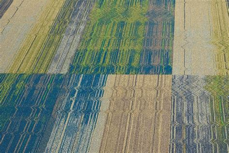 Tandus Carpet Tile Backing by Product Tandus Flooring Dv8 Architect Magazine
