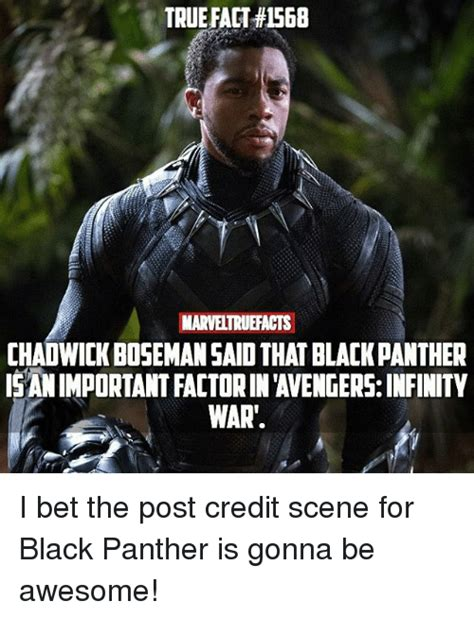 Black Panther Memes - true fact 1568 marveltruefacts chadwick bosemansaid that black panther is animportant factorin