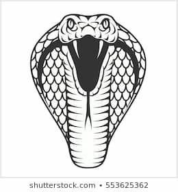 Cobra Head - Black And White Illustratio #91733 - PNG ...