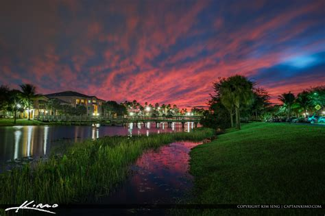 neighborhood colors after sunset palm gardens