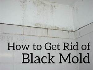 black mold shower wwwpixsharkcom images galleries With how to get rid of bathroom mildew