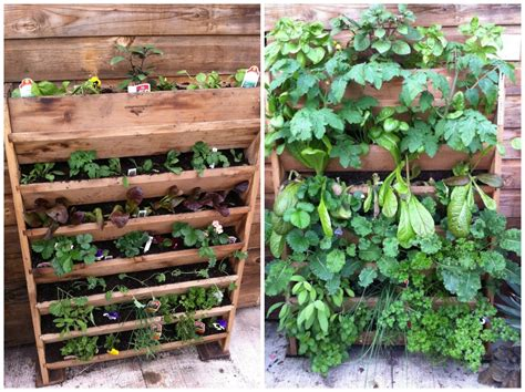 Vertical Vegetable Gardening Systems by Category Vertical Gardening Burlington Garden Center