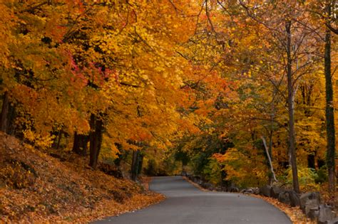 jersey interstate park palisades fall foliage places anthony roads scenic country nj quintano drive take fort most road drives spots