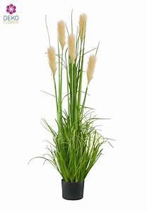 Künstliche Orchideen Im Topf : k nstliches gr nes schilfgras im topf 140cm ~ Watch28wear.com Haus und Dekorationen