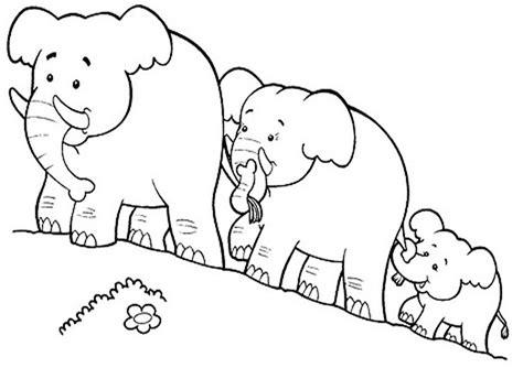 ausmalbilder elefanten  ausmalbilder tiere