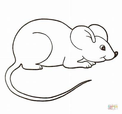 Mouse Coloring Mice Pages Clipart Printable Supercoloring