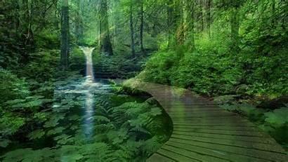 Peaceful Desktop Backgrounds Nature Landscape Wallpapers Lake