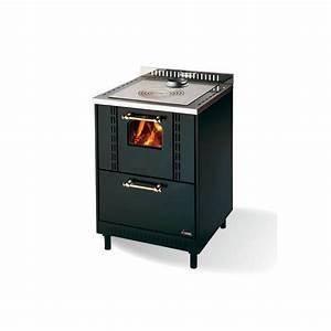 Poele A Bois Ventilé : cuisini re bois ventil encastrable cadel ghibli ~ Edinachiropracticcenter.com Idées de Décoration