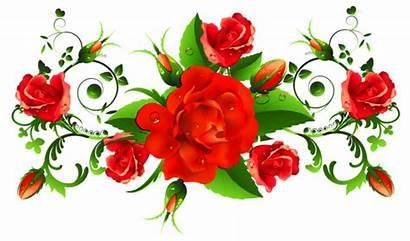 Roses Decor Rose Yopriceville Clipart Flowers Flower