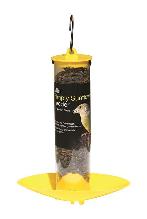 bird care tom chambers