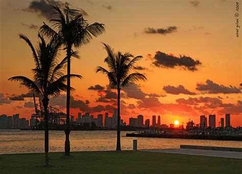 Image result for flicker commons images Miami
