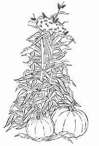 Free corn field coloring pages