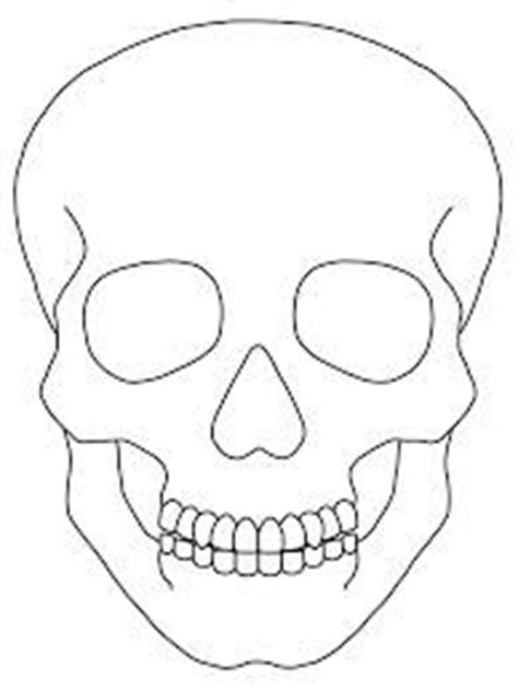 skull template images coloring pages coloring