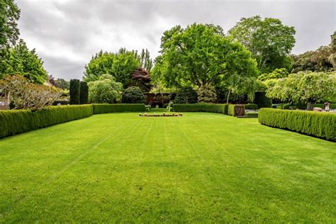 Burial Backyard by How To A Home Burial Everplans