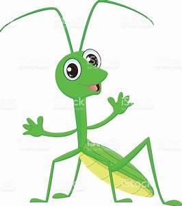 Grasshopper clipart face - Pencil and in color grasshopper ...