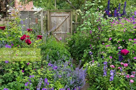 Gap Gardens  A Cottage Garden Border Planted With Hardy