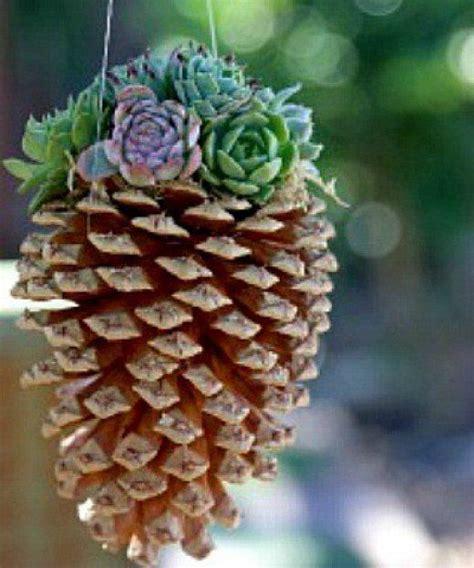 pinecone owls ideas  pinterest owl ornament