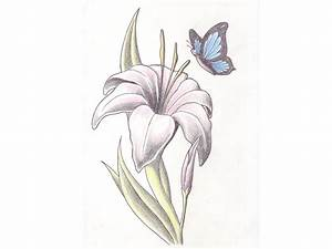 43+ Lily With Butterfly Tattoos Ideas