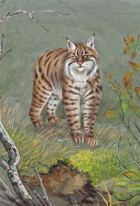 Indian Miniature Bobcat Wild Life Art Handmade Animal