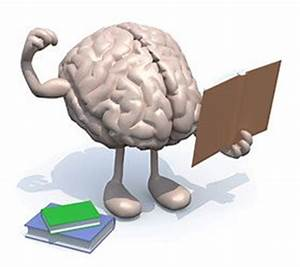 Your Developing Brain and How to Take Care of it