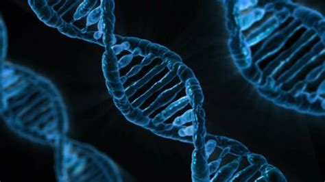 scientists discover   double helix isnt