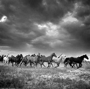 The last cowboys: Stunning black and white images show a ...