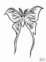 Moth Luna Coloring Pages Silkworm Drawing Lune Drawings Printable Supercoloring Getdrawings 480px 63kb sketch template