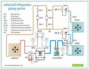 Commercial Refrigeration Wiring Diagrams