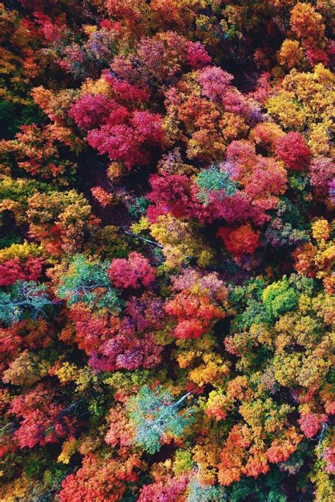 Fall Backgrounds Aesthetic Desktop by 477 Best Seasons Autumn Aesthetics Images On
