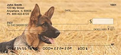 Shepherd German Checks Dog Rated Friends Breeds