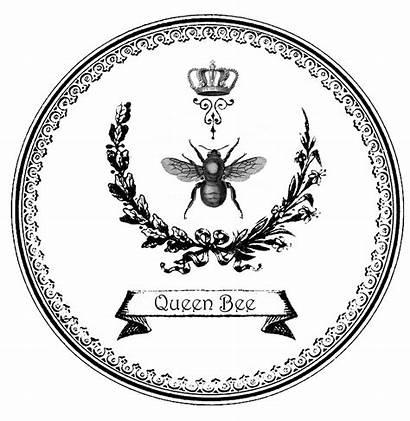 Bee Queen Graphic Queenbee