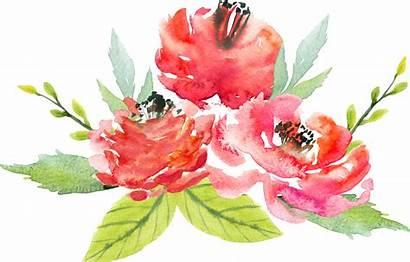 Watercolor Flowers Flower Transparent Floral Bouquet Painting