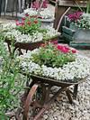 34 Best Vintage Garden Decor Ideas and Designs for 2019 flower garden ideas and decorations