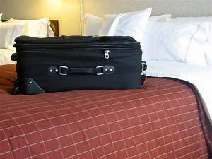 do landlords have to disclose bed bugs to tenants With bed bugs in luggage