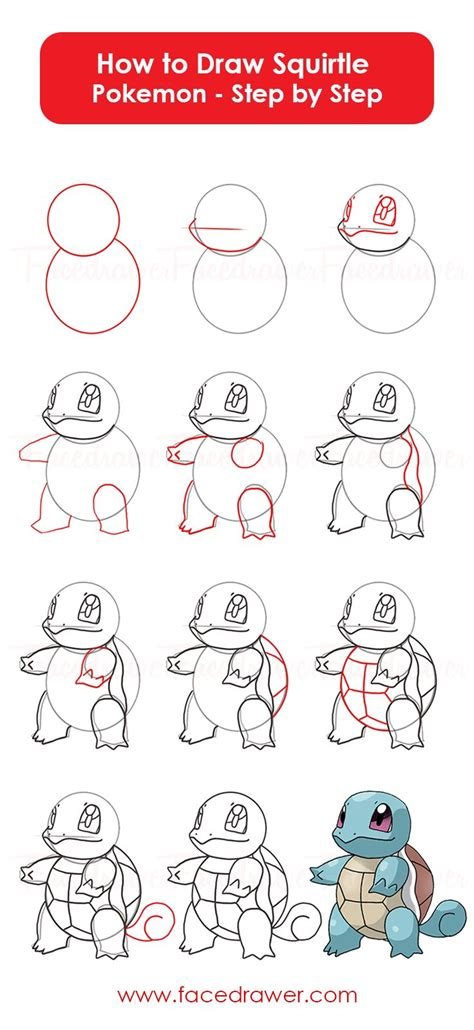 cute squirtle pokemon learn   draw