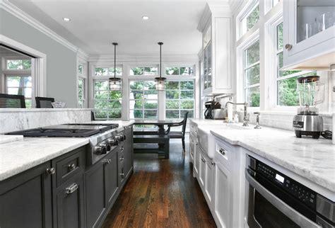 black  white galley kitchen transitional kitchen