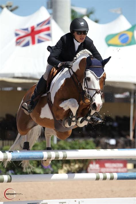 horse jumping horses hunter jumper jumpers paint pinto equestrian jump pretty riding stable she cheval pie pony wants goutal brianne