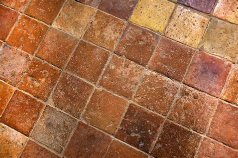 l as du carrelage faire partir des traces d urine d animaux sur du carrelage