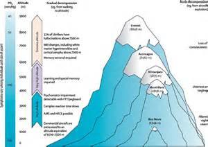 High Altitude Adaptation