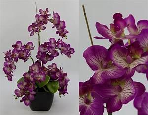 Künstliche Orchideen Im Topf : orchideen arrangement deluxe flieder im schwarzen dekotopf dp kunstblumen ~ Watch28wear.com Haus und Dekorationen