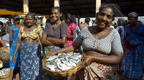 3771 sri Lanka Chilaw Fish Market sri Lanka Tour