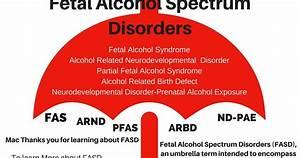 Neurodevelopmental Disorder Parenting Complex Children Day 31 The Fasd Umbrella
