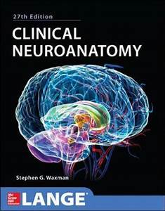 Clinical Neuroanatomy : Stephen G. Waxman : 9780071797979