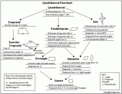 quadrilateral flow chart relation  quadrilaterals
